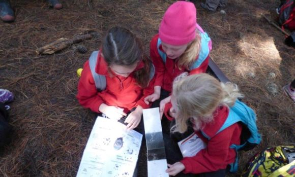 Te Mata School students learning about tracking tunnels.