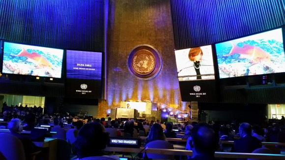 World Oceans Day at the UN_Sylvia Earle_2017