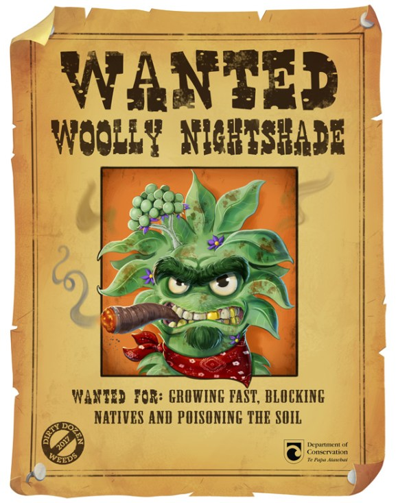 wanted-woolly.jpg