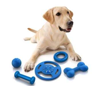 What are the 'must have Pet Dog Supplies' at home?