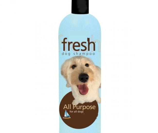 buy dog shampoo