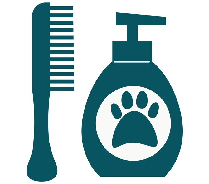 How is a Mobile Dog Grooming App Possible?