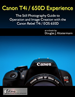 Canon T4i EOS 650D book ebook how to manual dummies field guide