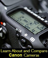 Canon EOS dSLR mirrorless camera review compare