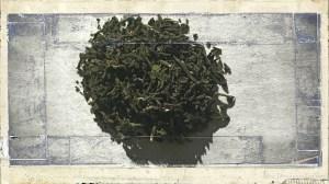 Aged Photo of Tea