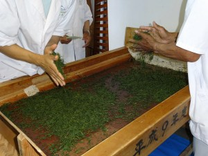 Rolling Tea By Hand