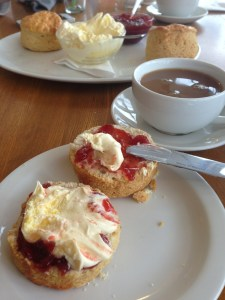 Muffin with clotted cream and jam and cream tea.