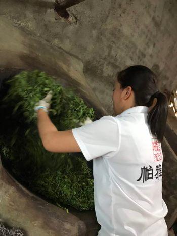 Tea processing by the Dai of Yunnan China