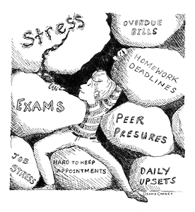 The Nature of College Pressure