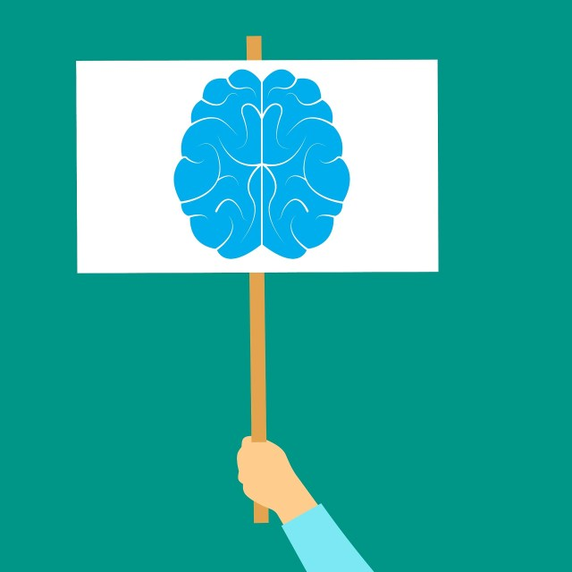 De misleidende verleiding van de neurowetenschap