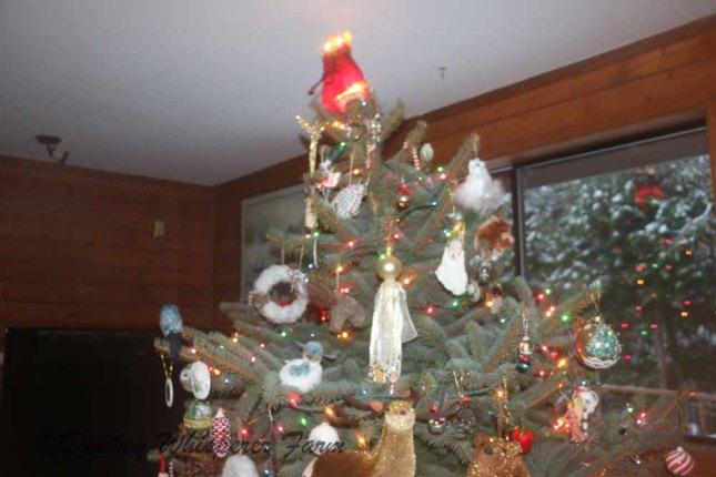 Christmastreeangelontop2013