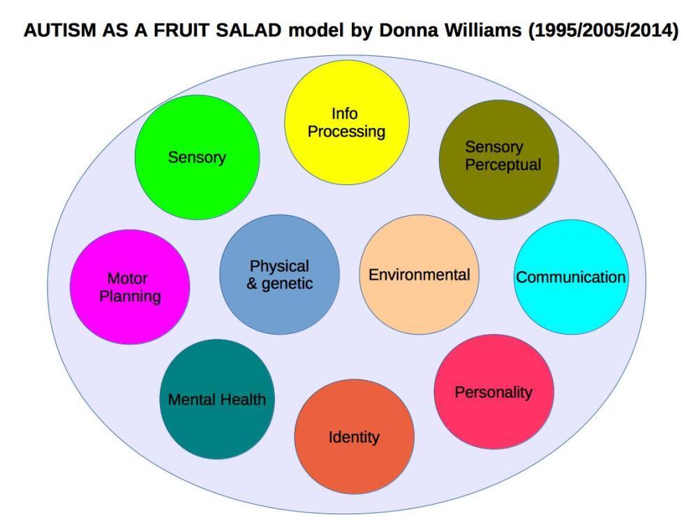 medium resolution of autism as a fruit salad model 2