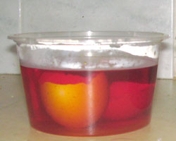 Egg shell soaking in red water.