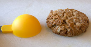 Anzac biscuit and spoon.