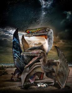 Pterosaur picture