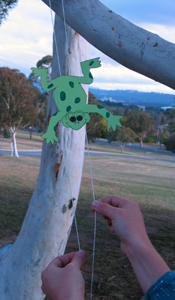 A paper frog blalanced on two strings. The strings are attached to a tree, and someone is holding the other ends.