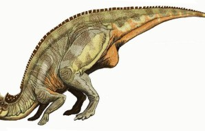 A duck-billed dinosaur.