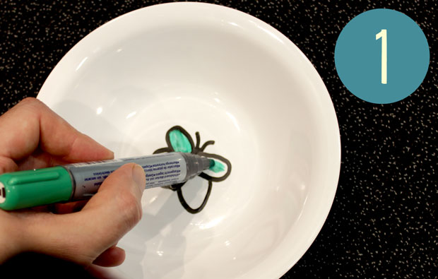 Drawing a butterfly on the inside of a white bowl.