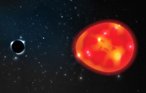 Egg shaped star with black hole behind.