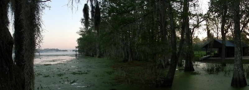 Sunrise on the Bayou