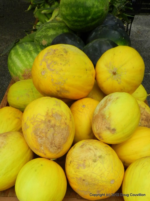 photograph of yellow and green melons at a farmers market