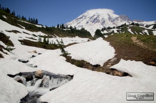 photograph of snow melt running down Mt Rainier by Doug Couvillion