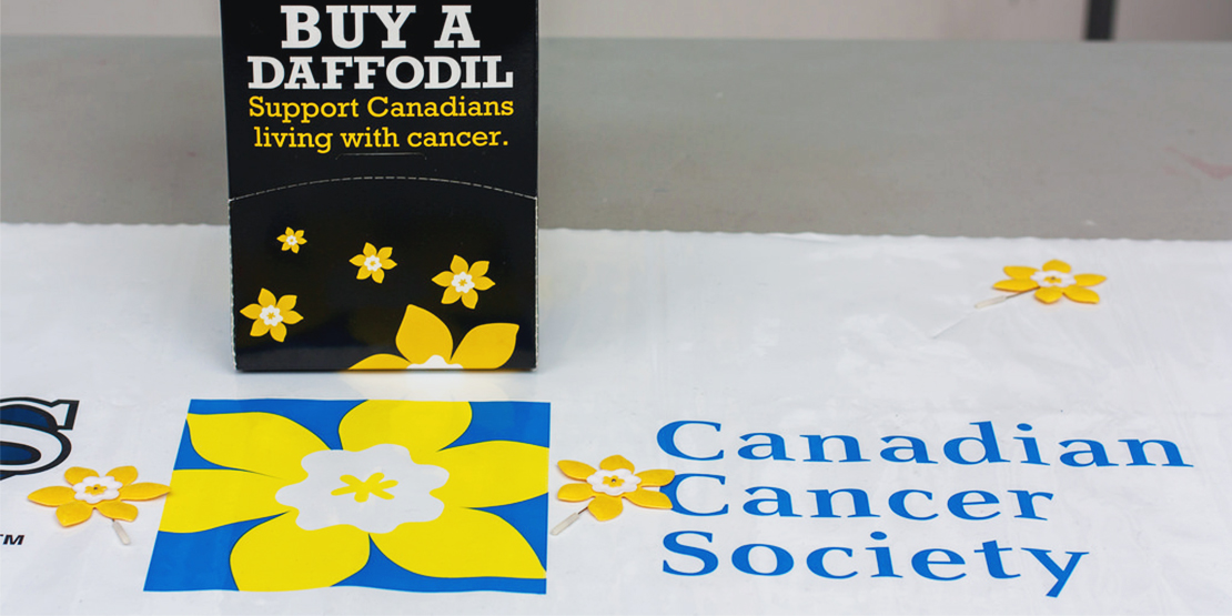 canadian cancer society logo with yellow daffodils