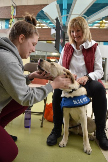 Therapy dogs treated students some much-needed affection on March 12 thanks to the DSU.