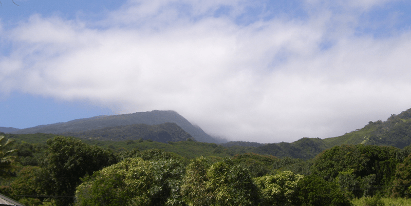 Nancy Vickery's Walk to Hawaii