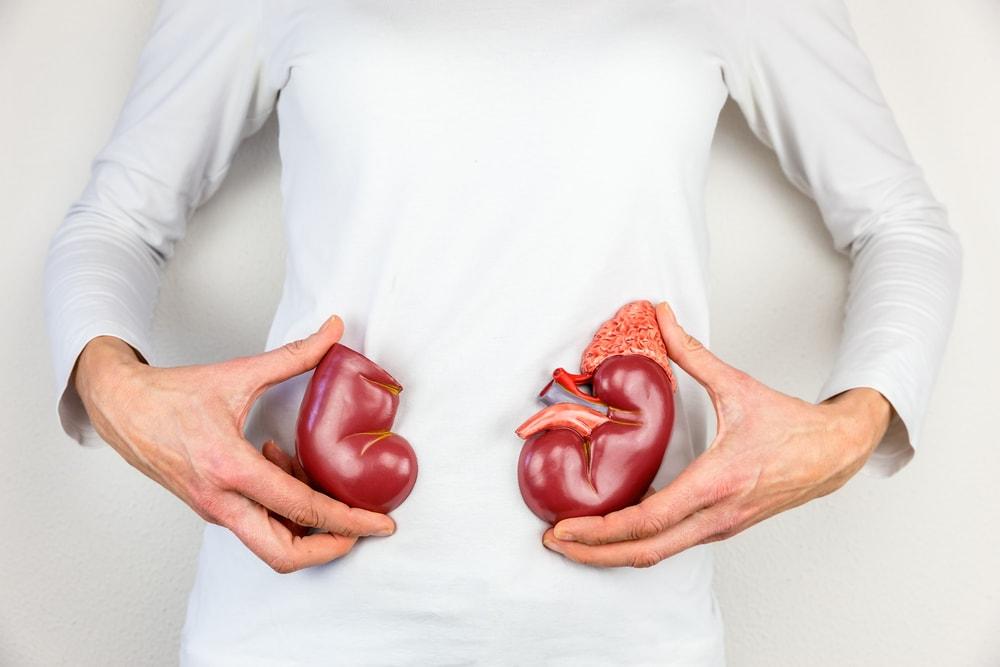Insuficiência renal: entenda as causas e opções de tratamento