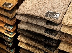 Samples of carpet choices