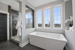 ALB-0049-00_Monticello_master-bath2