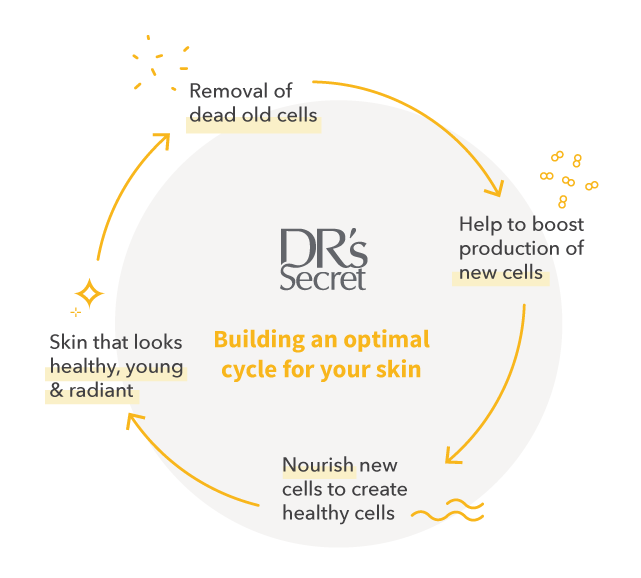 Building an optimal cycle for skin