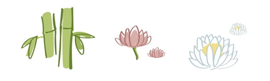 龙头竹、莲花 、白睡莲萃取