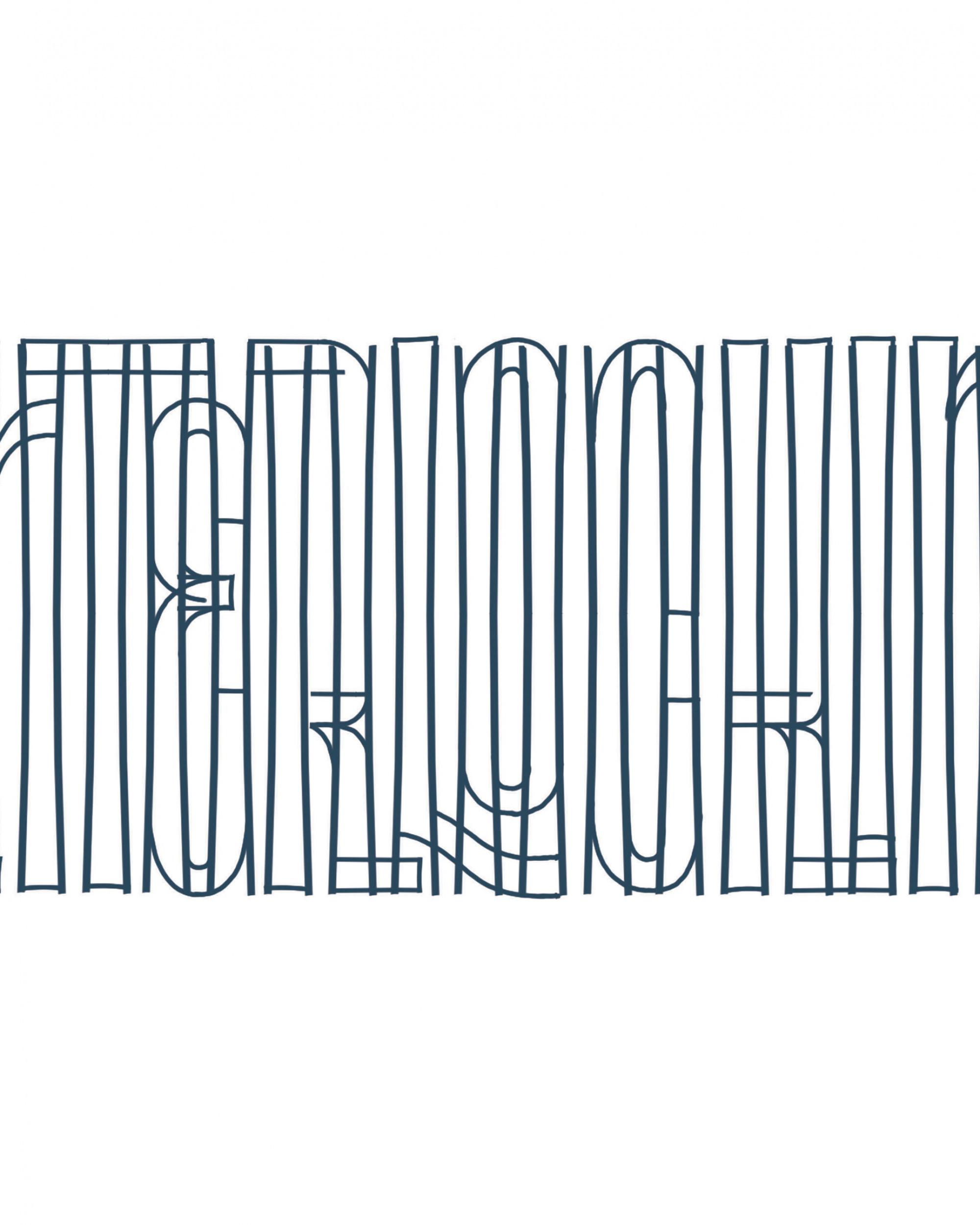 grafisch inspiratieboek hand lettering 5