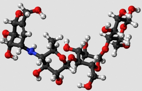 This is an oligosaccharide - a molecule made up of a few simple sugars linked together. (click for credit)