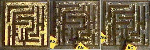"""A slime mold chooses the shortest path to the food (labelled """"AG"""") in a maze.  (Image is from the article being discussed.)"""