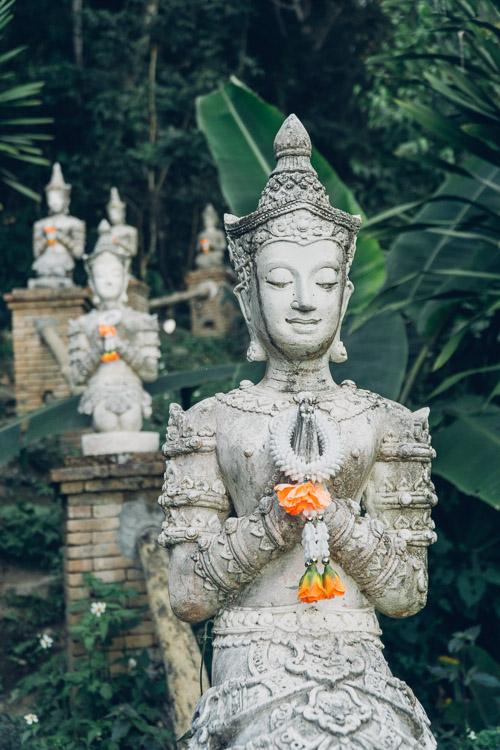 1123-ChiangMai-0011