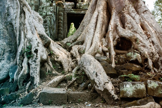 1209-AngkorWat-0354