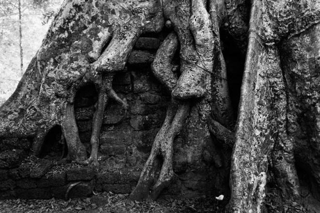 1209-AngkorWat-0396