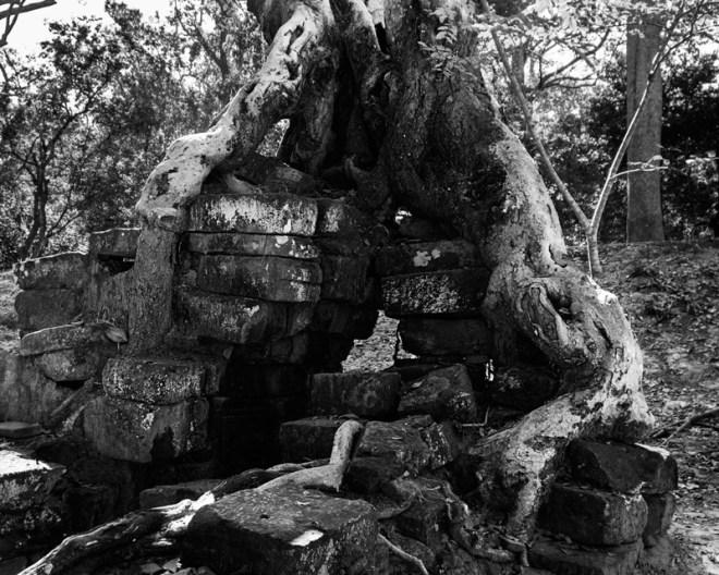 1209-AngkorWat-0431