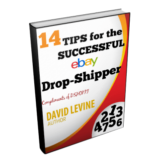 dropshipping free ebook pdf