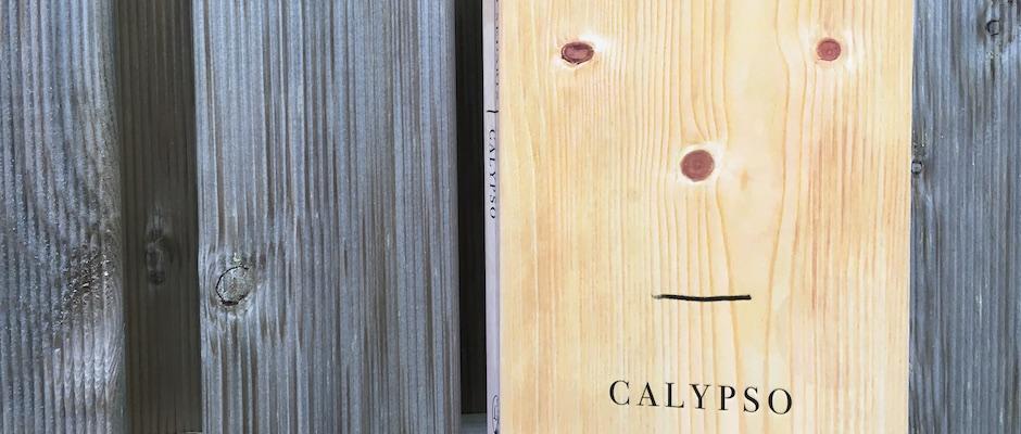 Calypso, by David Sedaris