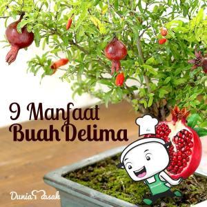 9-manfaat-buah-delima