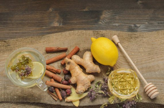 Tanaman Herbal Untuk Meningkatkan Imun via freepik ala tim duniamasak.com