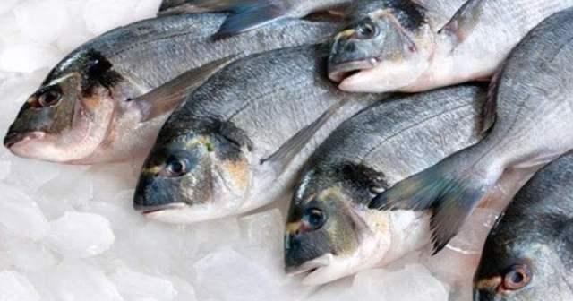 Tips Memilih Ikan Segar via www.pertanianku.com