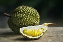 Khasiat buah durian via freepik ala duniamasak
