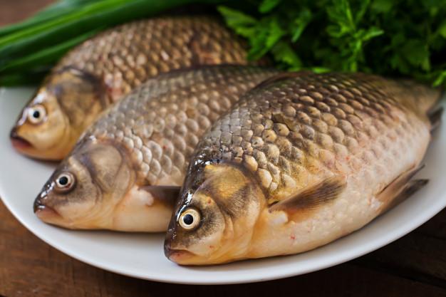Ikan air tawar untuk menu MPASI via freepik ala duniamasak