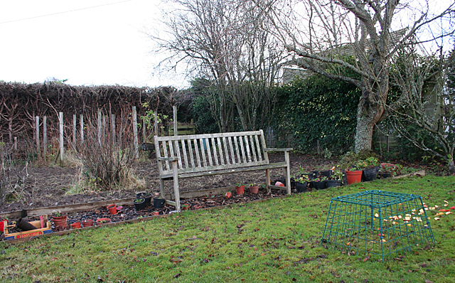 Garden bench in autumn