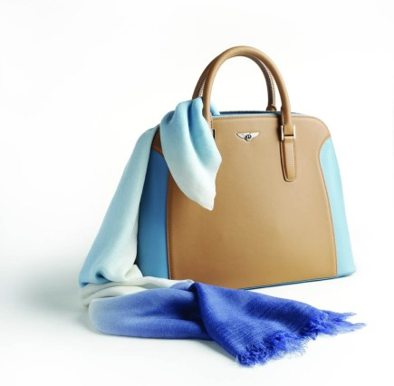 Bentley Cashmere Scarf and bag (2)
